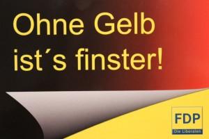 Warum es die FDP im Stadtrat von Halle braucht